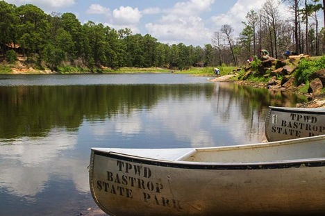 The Definitive Guide to State Parks near Austin - Bastrop State Park - Realty Austin