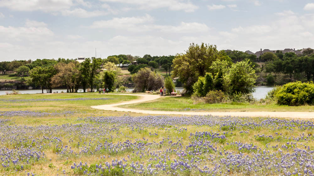 Image of Brushy Creek Lake Park
