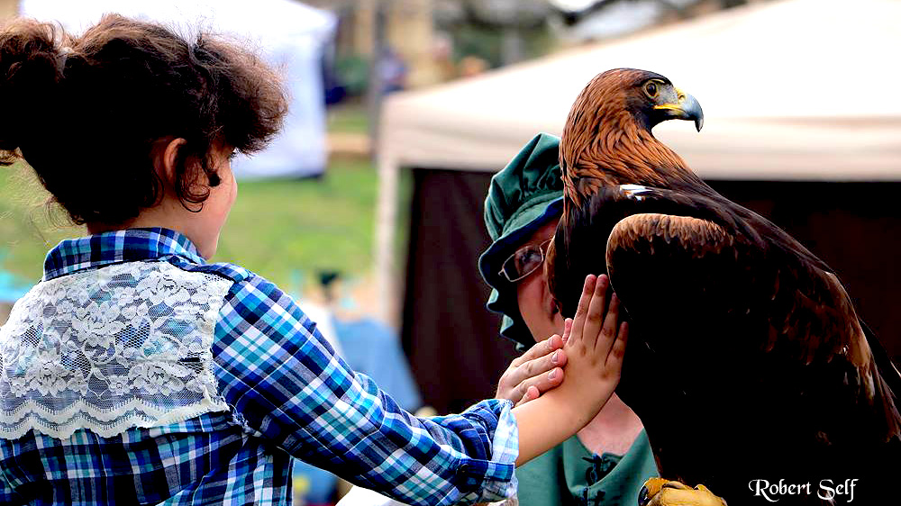 Image of Kerrville Renaissance Festival