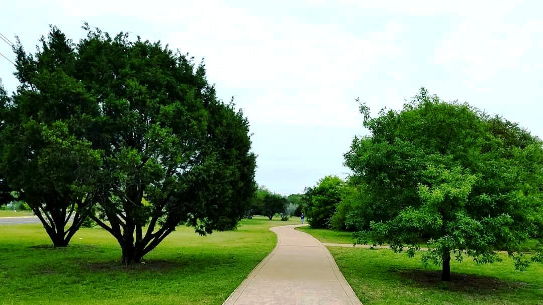 Image of Dick Nichols Park