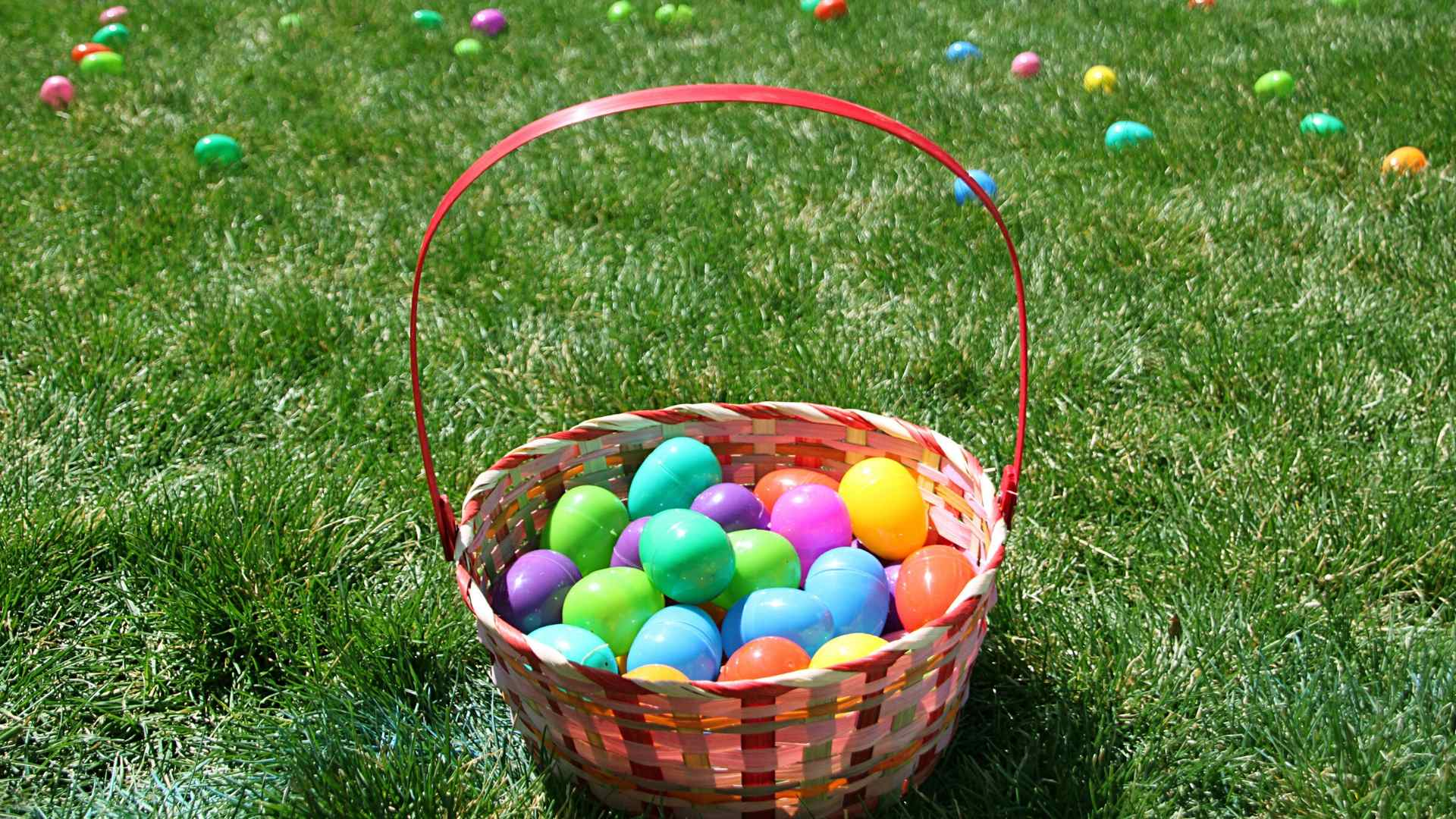 Image of Easter Egg Hunt