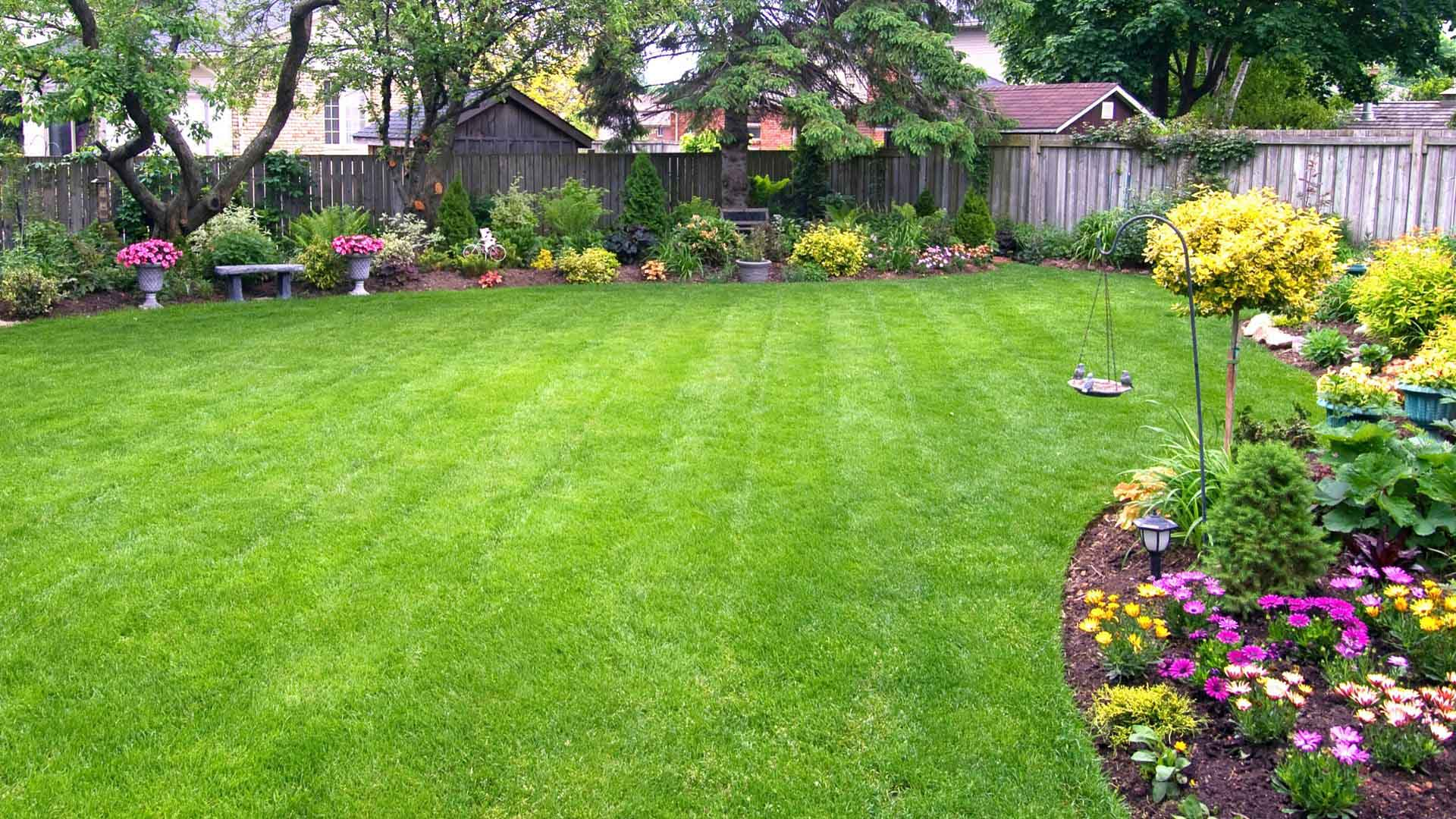 Image of Landscape the Yard