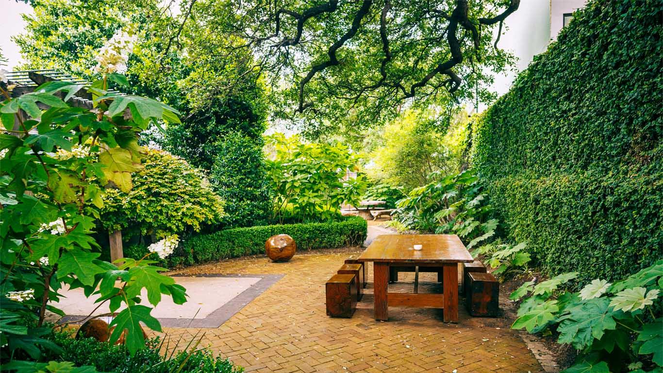 Austin's Best Staycation Ideas and Weekend Getaways