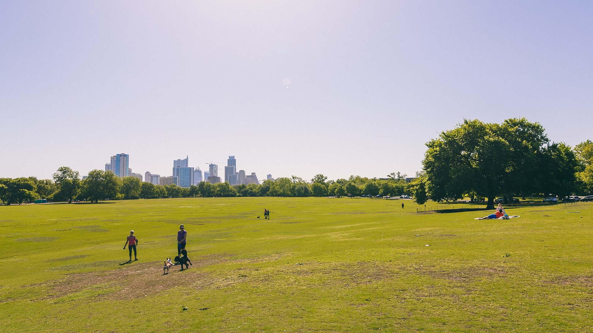 Image of Zilker Park with Austin skyline