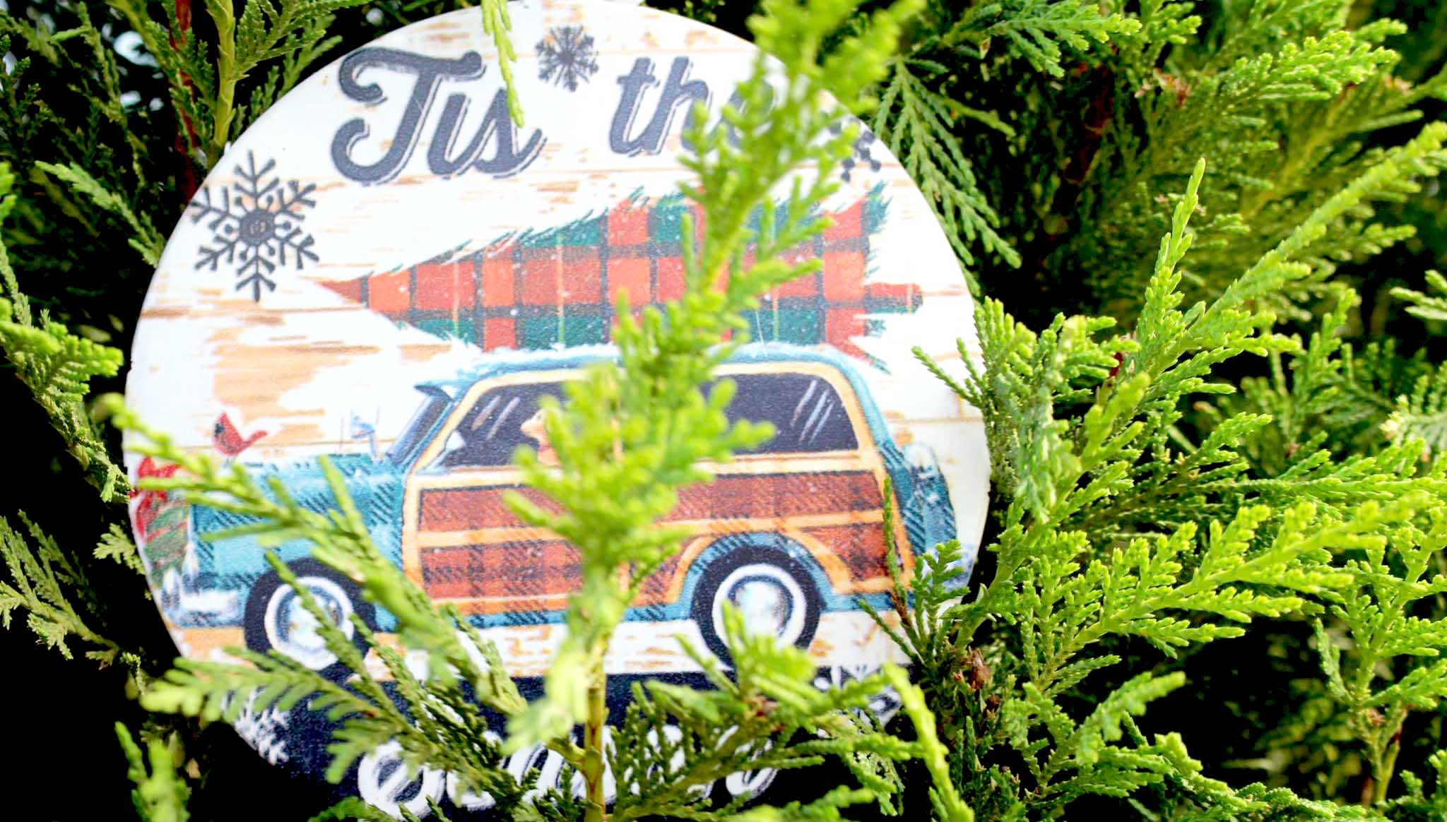Image of Elgin Christmas Tree Farm