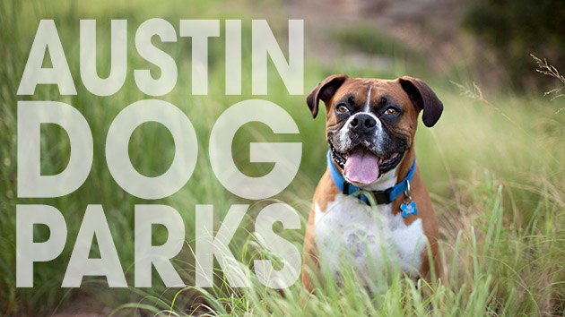 Austin Dog Shows and Dog Parks to Visit