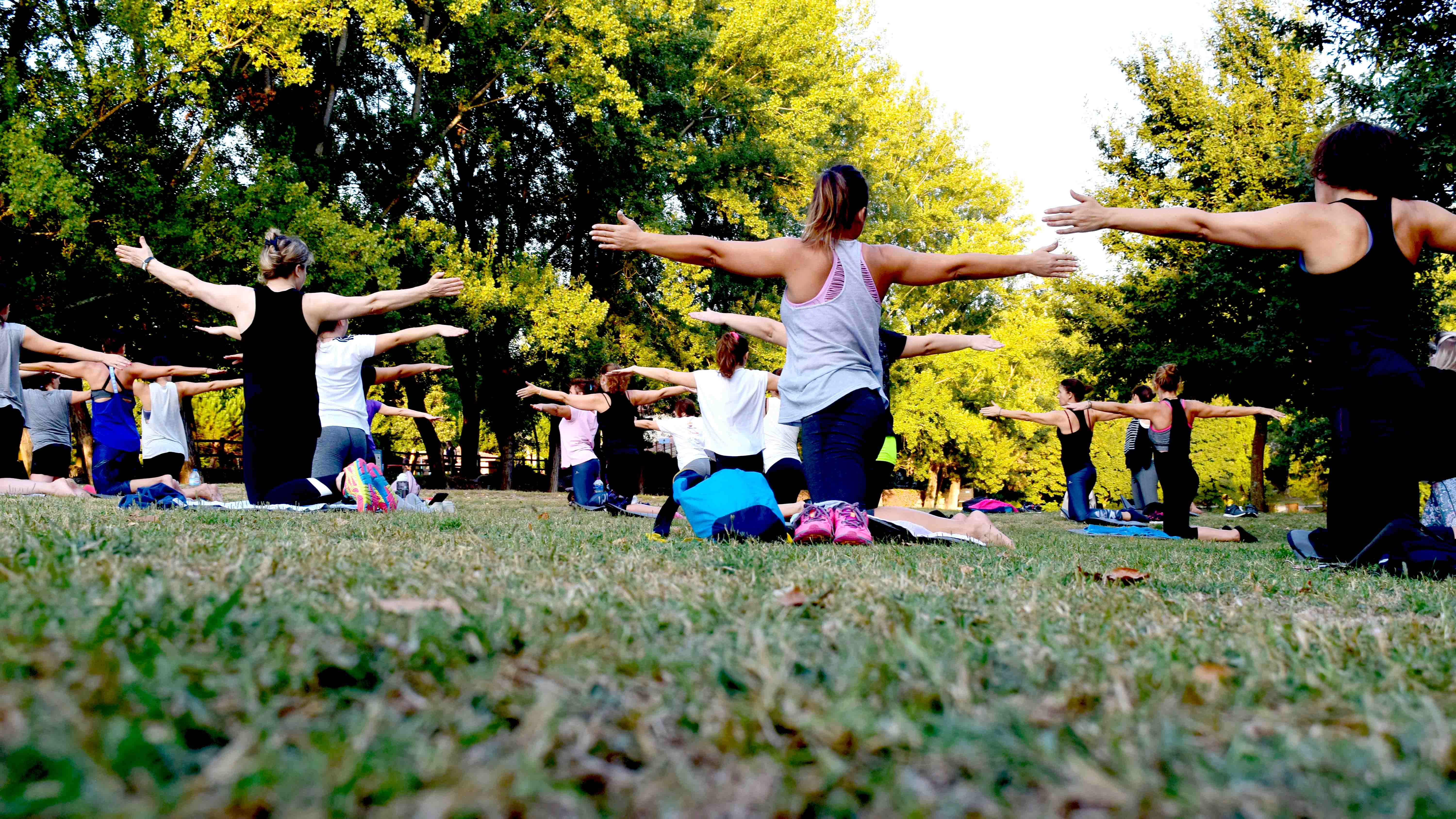Image of Yoga in the Park