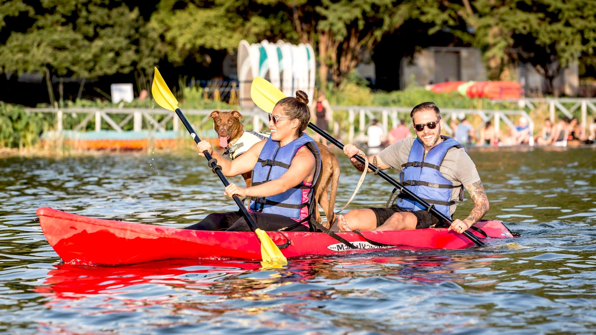 Image of Congress Avenue Kayaks
