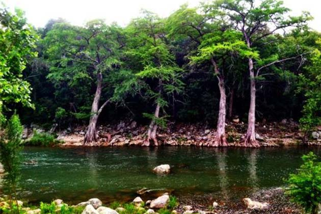 The Definitive Guide to Austin's Best Swimming Holes - Guadalupe River - Realty Austin