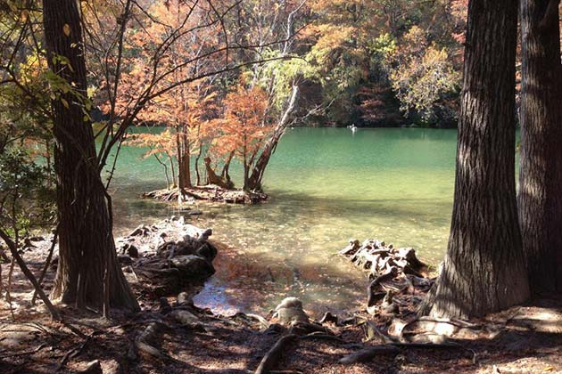 The Definitive Guide to Austin's Best Swimming Holes - Red Bud Isle - Realty Austin